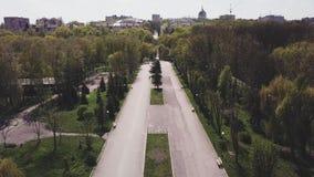 Hommelmening over de steeg in het park op een zonnige dag in de lente in stad stock footage