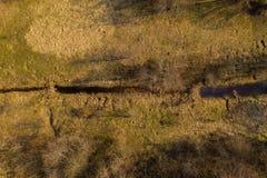 Hommelmening van beverdam in kleine rivier tijdens de lente zonnige dag royalty-vrije stock afbeelding