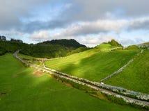 Hommelmening van het verbazende landschap van de Azoren Theelandbouwbedrijf op de groene gebieden op de het noordenkust van het e stock afbeeldingen