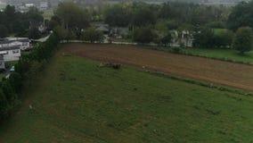 Hommelsatellietbeeld van Amish-Landbouwgronden en Amish-Landbouwer Harvesting in Mist stock footage