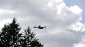 Hommelvliegen in de lucht stock footage