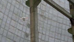 Hommelvliegen tussen de bouw structuren stock footage