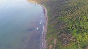 Hommelvlucht langs de kust stock videobeelden