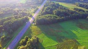 Hommelvlucht over de weg stock videobeelden