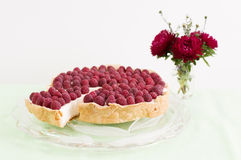 Hommemade raspberry cheesecake Stock Image