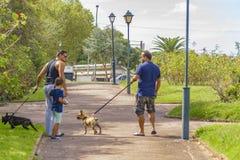 Hommes avec des animaux familiers marchant au parc Photo stock
