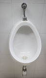 Hommes blancs d'urinoirs dans les toilettes publiques Images libres de droits