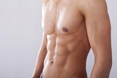 Hommes coffre et muscles photo stock