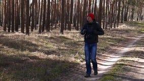 Hommes dans une forêt de pin banque de vidéos