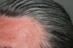 Hommes gris de cheveux Images libres de droits