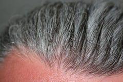 Hommes gris de cheveux Images stock