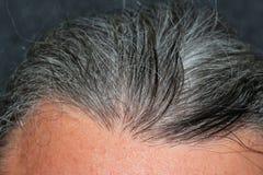 Hommes gris de cheveux Image stock