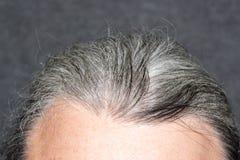 Hommes gris de cheveux Image libre de droits