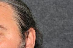Hommes gris de cheveux Photographie stock libre de droits