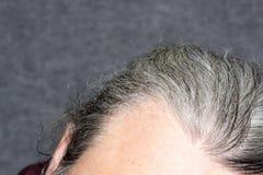 Hommes gris de cheveux Photo stock