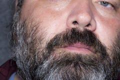 Hommes gris de cheveux Photos libres de droits