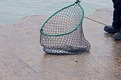 Hommes pêchant pour de petits saumons de coho de ressort Images libres de droits