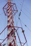 Hommes peignant la plus haute tour tchèque Liblice d'émetteur radioélectrique de construction Images stock