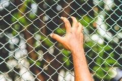 Hommes simples détenus pendant longtemps image stock