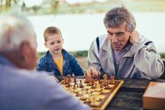 Hommes supérieurs ayant l'amusement et jouant des échecs au parc Images libres de droits