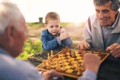 Hommes supérieurs ayant l'amusement et jouant des échecs au parc Photos libres de droits