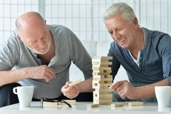 Hommes supérieurs jouant le jeu de société Image libre de droits