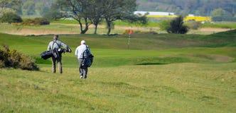 Hommes sur le terrain de golf marchant vers le Pin avec des sacs de golf Image stock