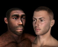 Erectus and sapiens comparison - 3D render. Erectus and sapiens comparison in black background - 3D render royalty free illustration