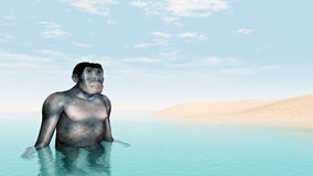 Habilis - Human Evolution Stock Images