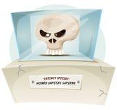Homo Sapiens Extinct Species. Illustration of a cartoon human skull inside museum exhibition, symbolizing extinction of human species Stock Photography