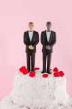 Homo wedding cake Royalty Free Stock Photos