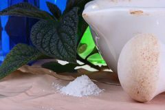 Homoeopathic. Preparations: a plant and a powder against an old paper and cup and mallet Stock Photo