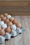 Homogeen concept: Verschillende soorten homo van het eierenverblijf samen Stock Afbeeldingen