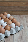 Homogeneous concept : Different kinds of eggs stay together homo Stock Images