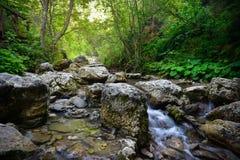 Homole山沟的河在Pieniny山 库存图片