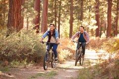 Homoseksualny Męski pary kolarstwo Przez spadku lasu Zdjęcie Royalty Free