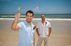 Homoseksueel in huwelijk Stock Afbeeldingen