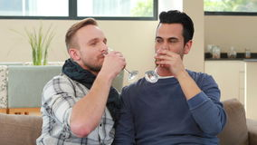 Homosexual couple drinking champagne stock video footage