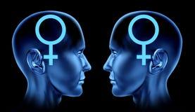 Homosexuelle homosexuelle Frauen der sexuellen Ausgaben der Paare lesbisch lizenzfreie abbildung