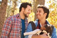Homosexuelle männliche Paare mit dem Baby, das durch Fall-Waldland geht Stockfoto
