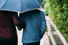 Homosexuelle Paare, die Regenschirm und Hände zusammenhalten Zurück von den homosexuellen Männern, die in den Regen gehen stockbild