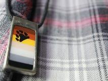 Homosexueller Stolz/Bär Pride Flag Necklace Lizenzfreies Stockfoto