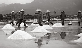 Hon Khoi Salt Village. Hon Khoi Salt field is a famous place to produce salt in Vietnam for international export. A lot of workers are working here. They are so Royalty Free Stock Photos
