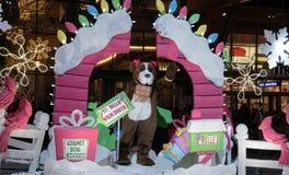 Hond bij de Bellevue-Kerstmisparade stock foto's