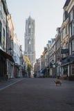 Hond in de oude stad van Utrecht en op de achtergrond Dom Tower Royalty-vrije Stock Fotografie