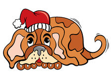 Hond in de tijd van Kerstmis Stock Afbeelding