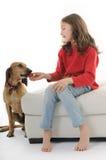 Hond die aardbei eet Stock Afbeeldingen