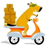 Hond die in de levering werken De autopedbestuurder van het huisdierenkarakter met B Royalty-vrije Stock Fotografie