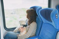 Hond die door trein met zijn eigenaar reizen stock foto's