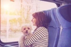 Hond die door trein reizen royalty-vrije stock afbeelding